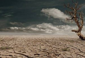 drought-public-domain